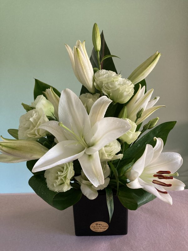 White Lily Classic